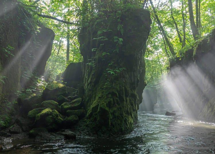 7日目 緑色の渓谷で感動体験