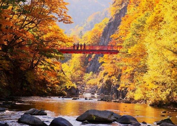 【2021年】札幌・ニセコ・洞爺など道央の紅葉スポット8選。秋の観光に必見!