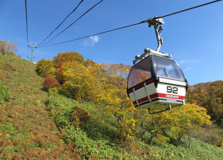 北海道道央紅葉景點⑦從空中纜車欣賞紅葉「新雪谷安努普利」(二世古町)