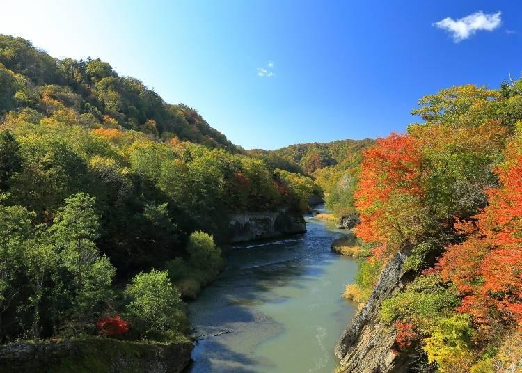 北海道道央紅葉景點⑤險峻溪谷與紅葉公園「瀧之上公園」(夕張)