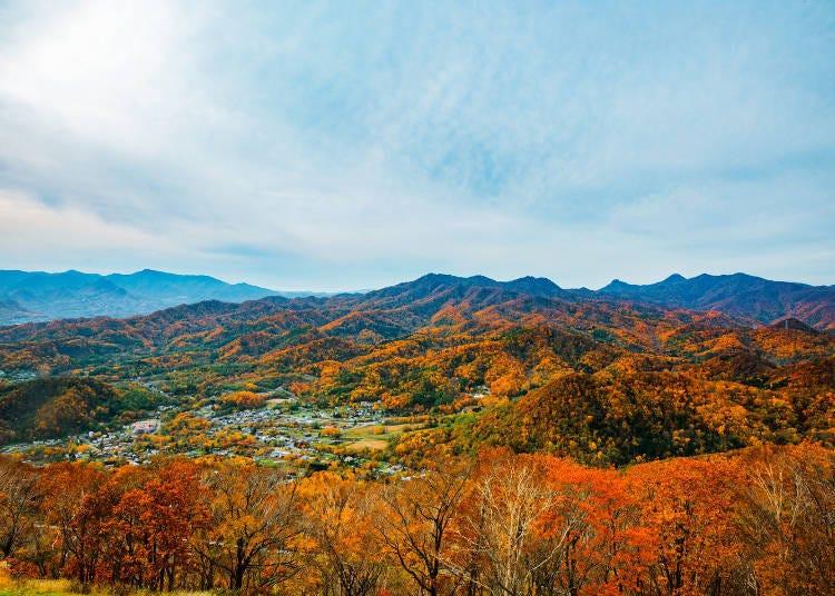 北海道道央紅葉景點②享受從空中纜車眺望到的美景!「藻岩山」(札幌)