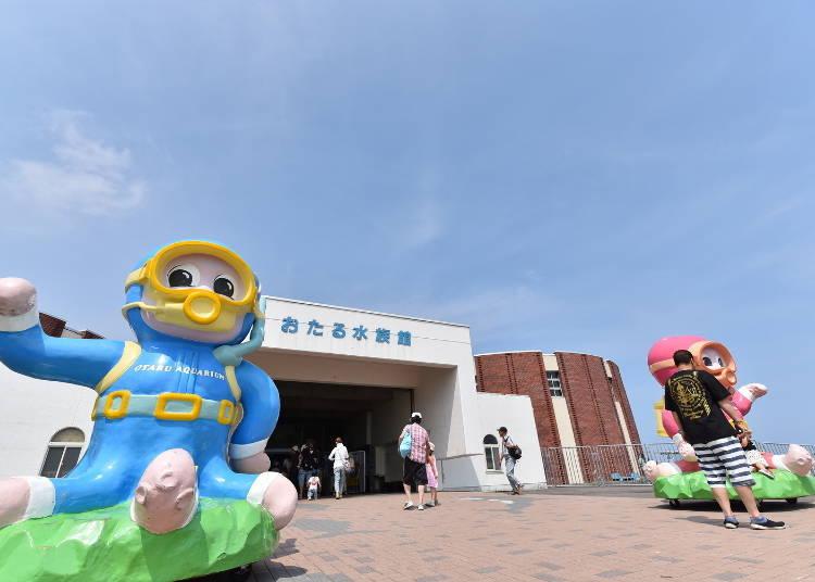 Receive a Warm Welcome from Otaru Aquarium's Mascot Characters