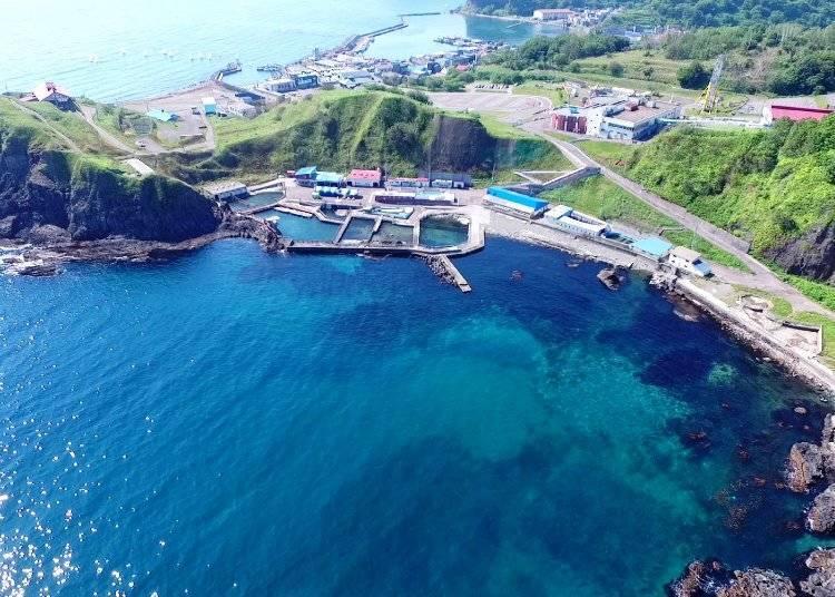 바다의 일부가 전시장으로 변신! '해수 공원'