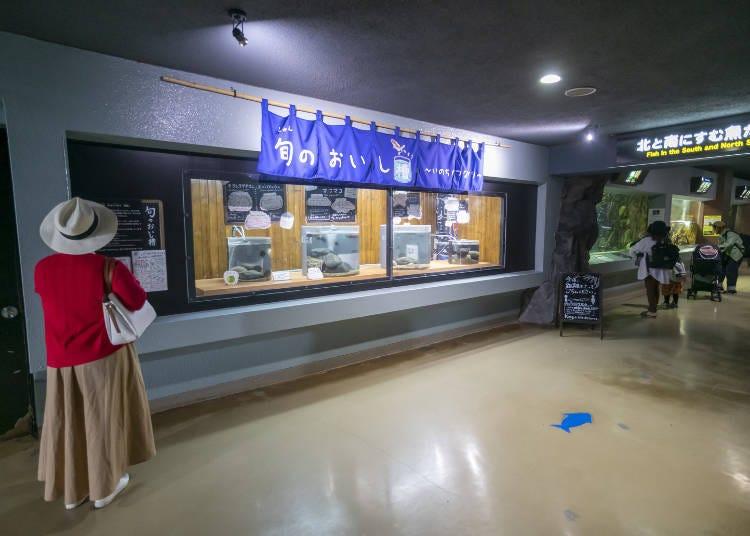 小樽水族館看點③海洋生物好吃的時期!「當季美味水槽」
