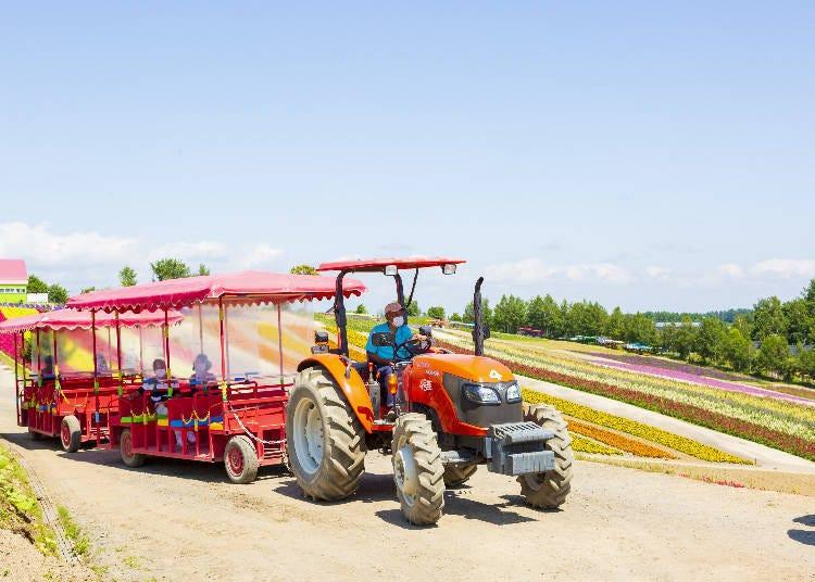 Hop a ride around the Shikisai-no-Oka flower fields!