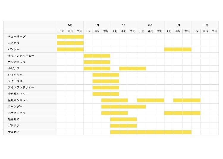 見頃は?季節の花カレンダー