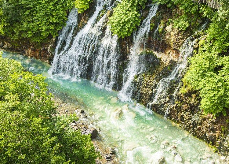 白金青い池と合わせて見たい、「白ひげの滝」「美瑛川」
