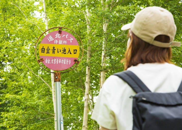 시로가네 아오이이케까지 가는 방법