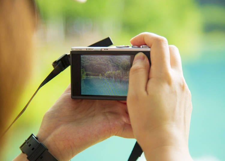 白金青池的拍照時機跟景點