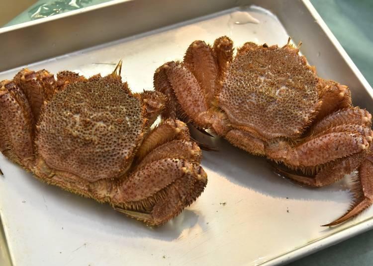 北海道螃蟹種類④毛蟹:整年