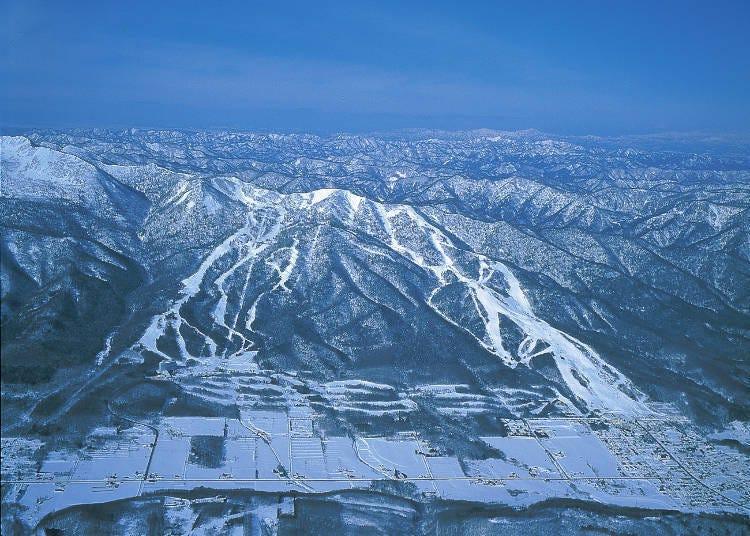 富良野滑雪场小简介
