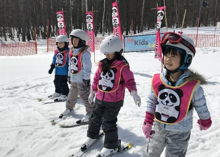 新手也不用担心!富良野滑雪场的教学课程