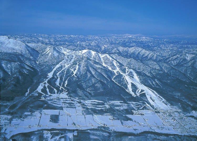 富良野滑雪場小簡介