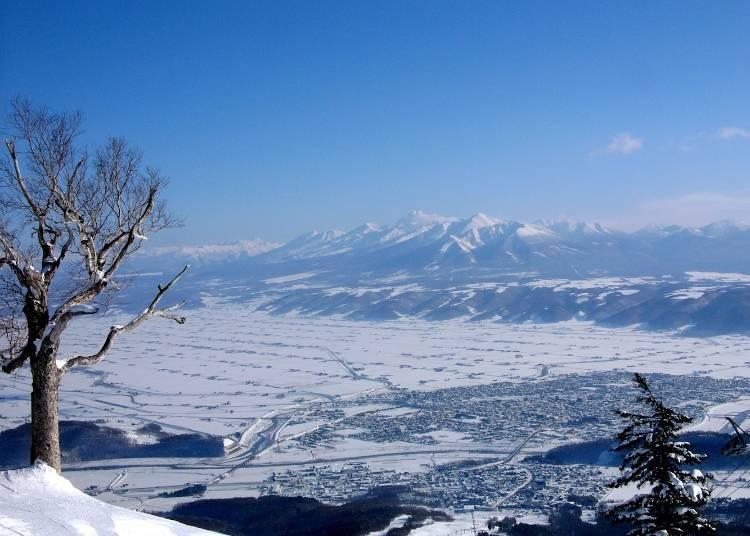 富良野滑雪場的最佳時期在12月中~2月底!