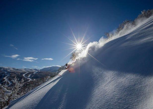 Head to Kiroro Ski Resort to Enjoy Some of the World's Best Powder Snow!