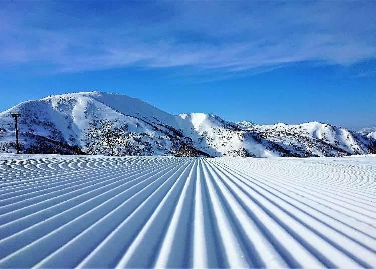 前往喜乐乐度假村、Kiroro滑雪场的交通方式