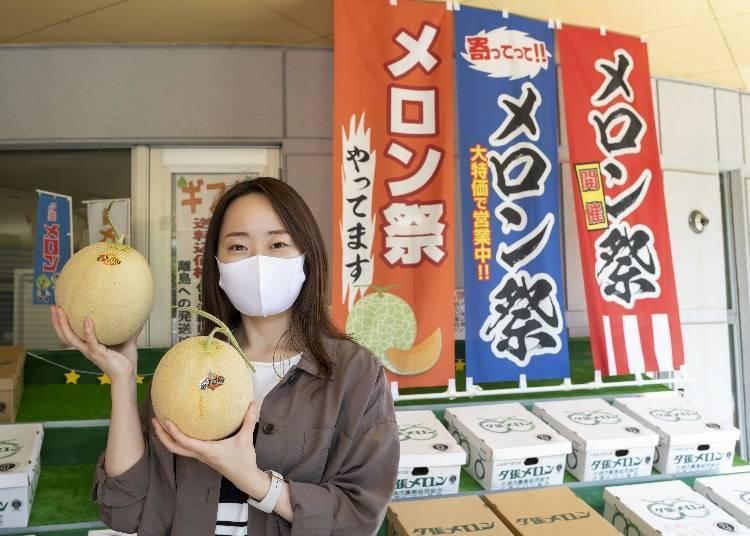 夕張哈密瓜只有在夏天的日本才吃得到?