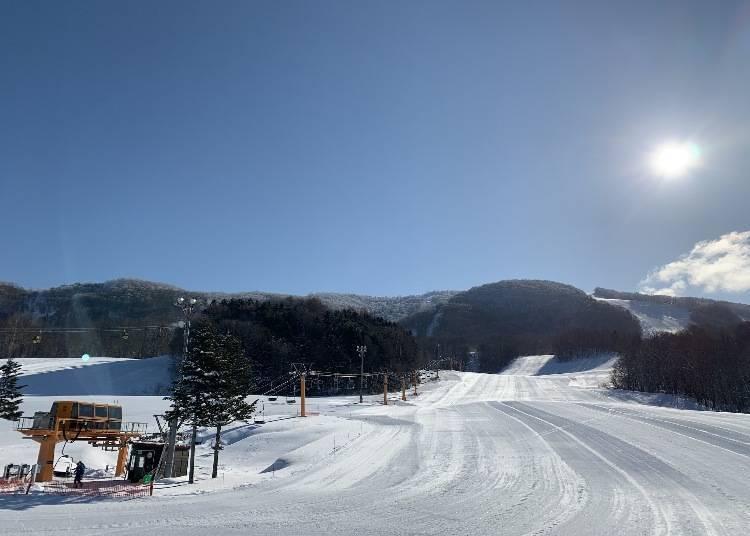神居滑雪场的雪道介绍:从招牌雪道到新手、中间等级、老手的推荐雪道