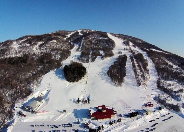 神居滑雪場的魅力就是粉雪!
