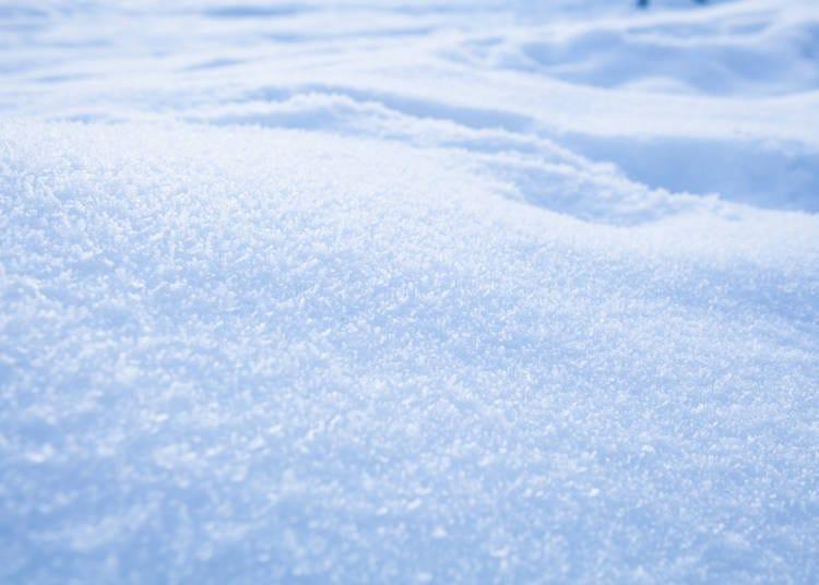 在北海道「享受」粉雪的2个秘密