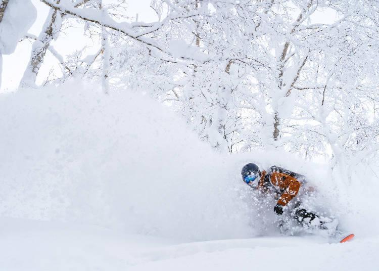 3일째, 세계의 스키어가 인정하는 루스츠를 만끽