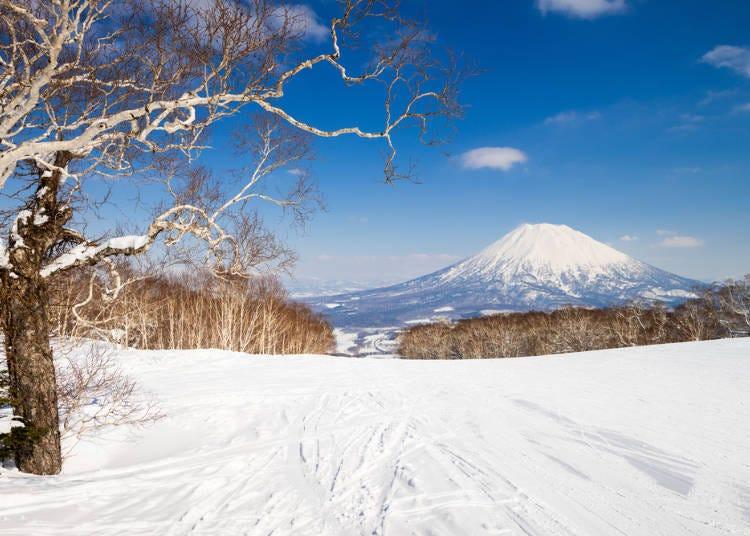 겨울의 홋카이도는 오지 않으면 느낄 수 없는 놀라움과 감동이 있다