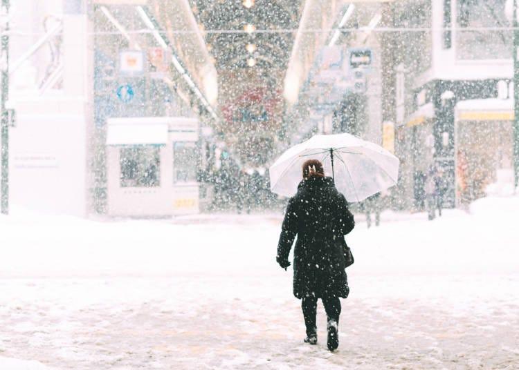 2.與酷寒的國家相比,札幌的冬天完全不冷