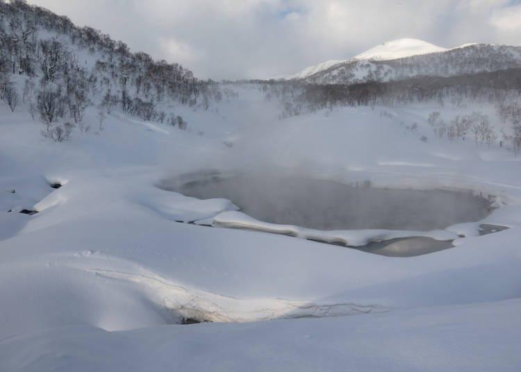 1. 대자연에 둘러싸인 산간의 당일치기 온천 '교류촉진센터 유키치치부'(러시아 / 여성)