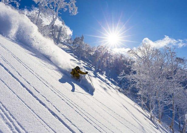 留壽都度假村的滑雪指南!吊椅券、用具出租、交通方式等