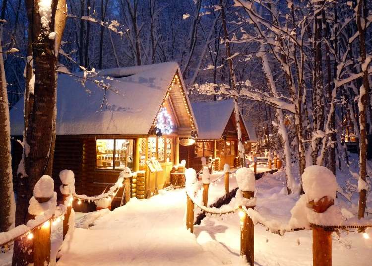 Winter in Japan's Wild North Is Dreamy