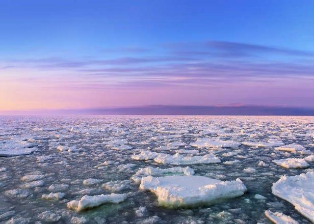 北海道冬天7項自然體驗導覽!帶你享受雪與冰的世界