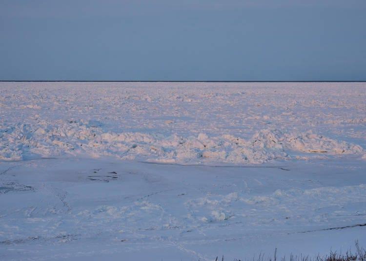 3.流氷が寄せるオホーツク海岸の散策