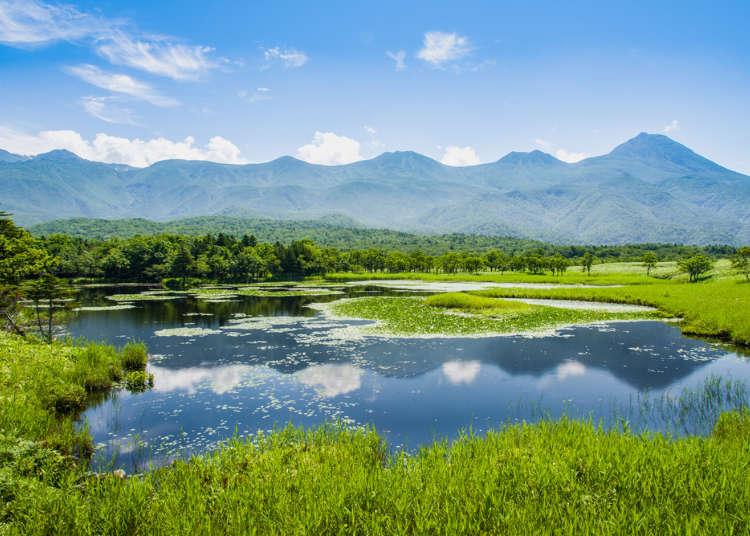 世界的ネイチャーガイドが語る、北海道旅行で自然や文化体験がおすすめの理由