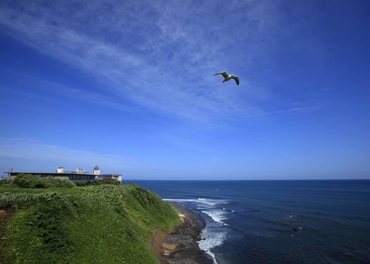 眺望大海的療癒旅館「心之渡假村 海之別府furu川」