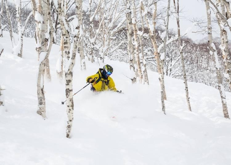 1.パウダースノーの上でスキー