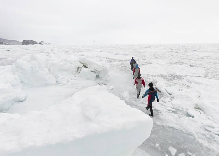 3.流氷の海で自然体験