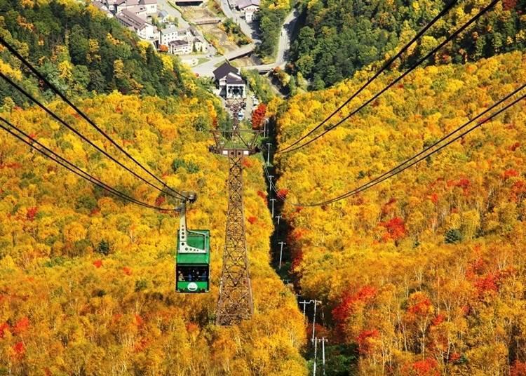 20. 在「黑岳」的枫红季节时,乘坐缆车欣赏秋天的美景