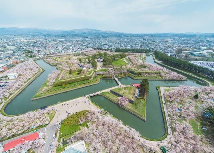 9. 欣賞被櫻花染色的「五稜郭」