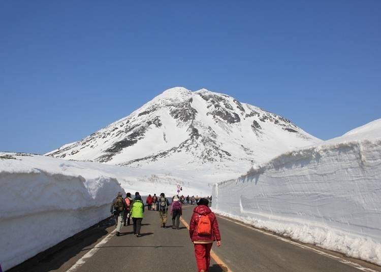 1 : 세계유산인 시레토코에서 개최되는 '시레토코 설벽 워크'에 참가하자