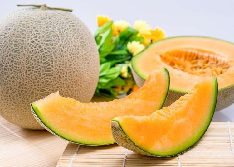 夕張メロンだけじゃない!「北海道のメロン」の種類や食べごろ、お土産を徹底紹介