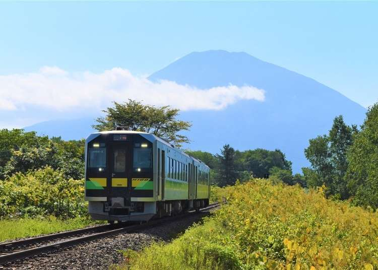 10 Incredible Experiences to Enjoy in Niseko According to 5 Foreign Residents! | LIVE JAPAN travel guide