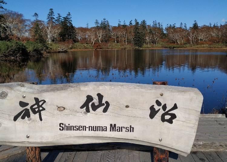 6)景色を映し出す神秘の沼「神仙沼 」