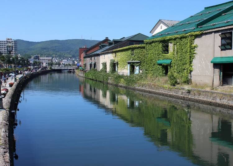 The Hokkaido dialect and Ainu language are different languages