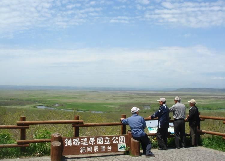 8) 6月  新綠的釧路濕原(釧路市)