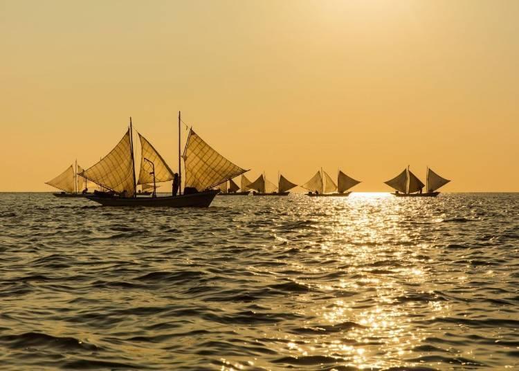 9) 6月  打瀨船與捕撈北海縞蝦(野付半島)