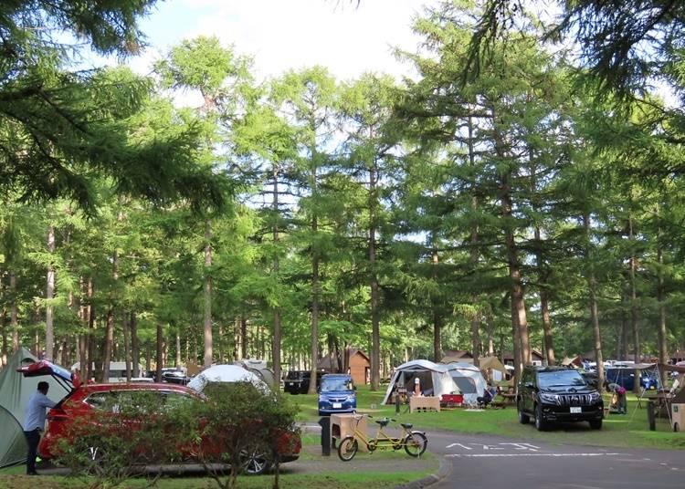 3. Auto Resort Tomakomai Arten (Tomakomai Town): Complete with refreshing hot springs!