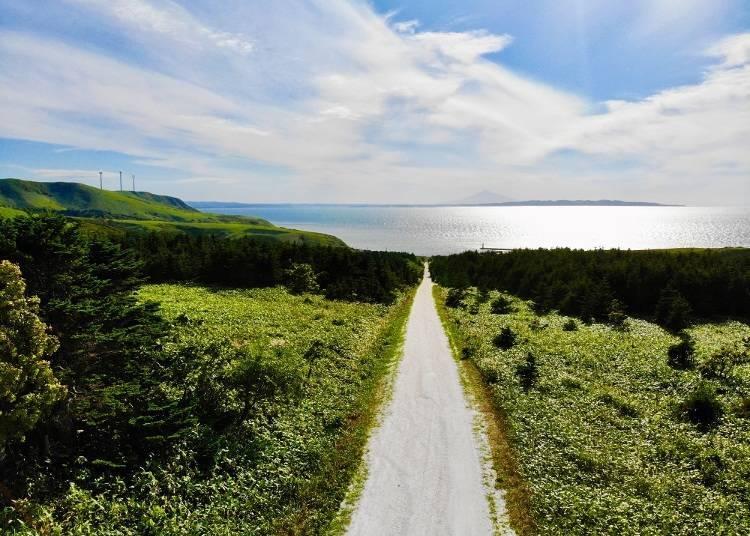 2) 바다에 이어지는 왓카나이의 '하얀 길'