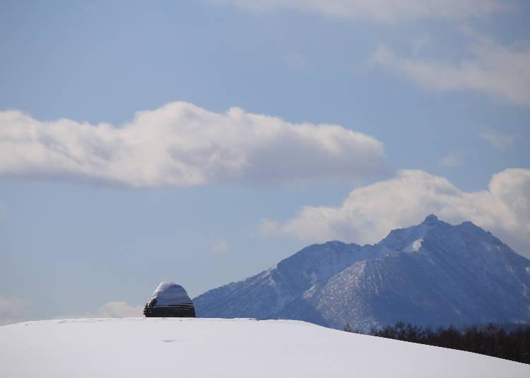 冬にはこんな幻想的な光景も!