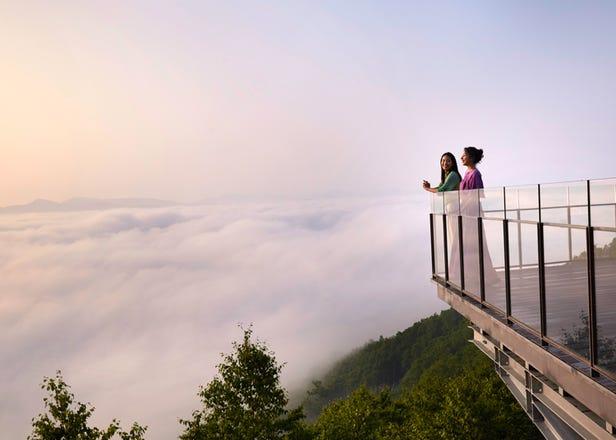Hokkaido's Renovated Cloud-Viewing 'Unkai Terrace' Brings You To The Sky's Edge, Has 'Cloud Cafe'