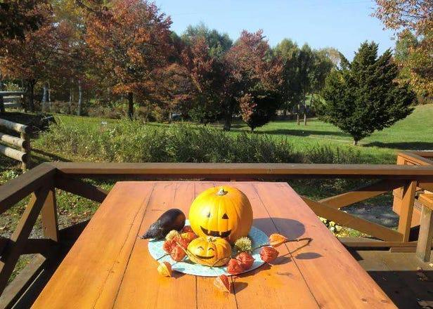 3 Sapporo Restaurants With Scenic Views of Dreamy Autumn Foliage